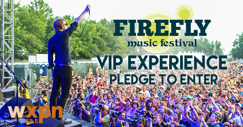 Firefly Festival VIP Experience